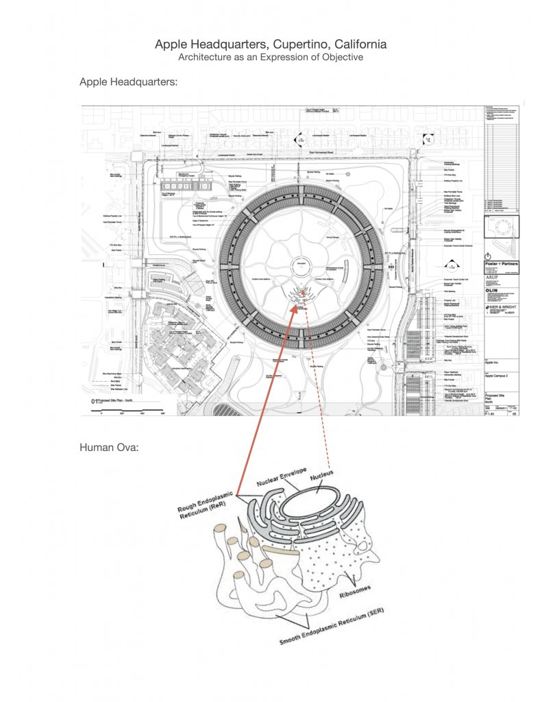 Apple-Headquarters-3-791x1024